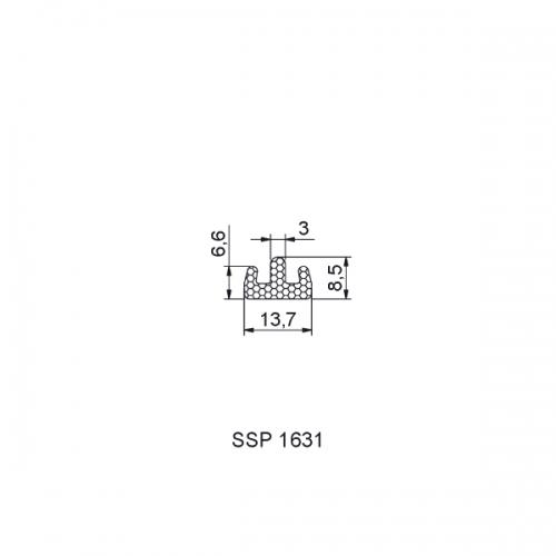 SSP01631