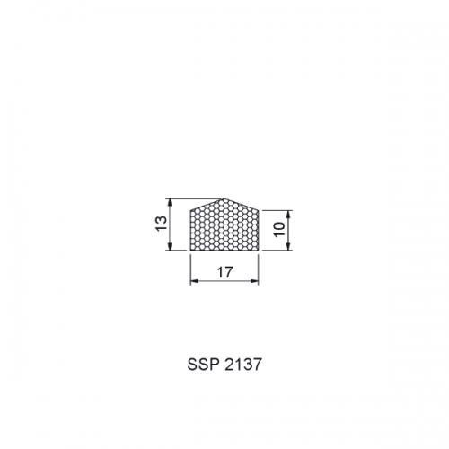 SSP02137